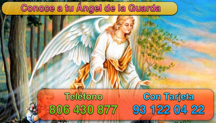 conoce a tu angel de la guarda