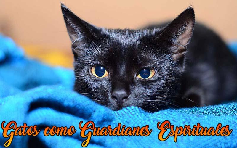 los gatos como guardianes espirituales